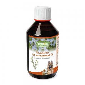 Ägyptisches Schwarzkümmel-Öl   Basis für die Ernährung   Pferdekraeuter.ch