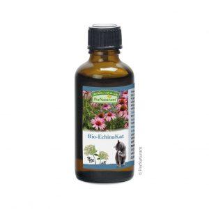 Bio-EchinaKat (50 ml)